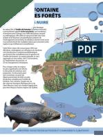 Omble_pisciculture Notes.pdf
