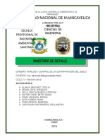 MUESTREO DE DETALLE.docx