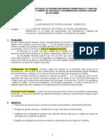 FEMINICIDIO (Resumen)