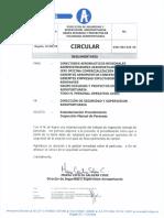 PROCEDIMIENTO INSPECCION MANUAL DE PERSONAS.pdf