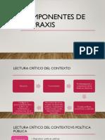 Componentes de la Praxis