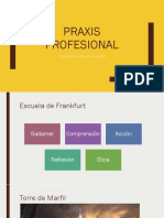 Praxis profesional