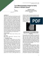 pdf333