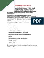HIDROPONÍA DE LECHUGA.docx