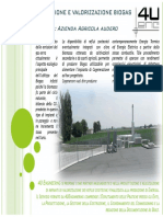LAVORI-4U-BIOGAS.pdf