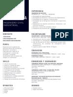 Experience.pdf