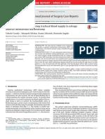 A-novel-technique-for-securing-tracheal-blood-su_2015_International-Journal-