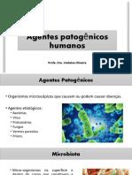 Patogenias humanas - Seleção Pitágoras.pptx