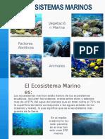Presentacion ecosistema marino.pptx
