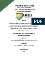 gas de cuy en español.pdf
