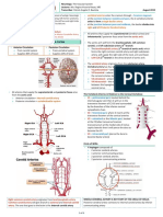 [Neurology] 2 - Vascular System