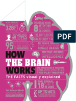 How the Brain Works - DK.pdf