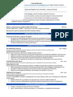 CV-MBA-fr-exemple-2
