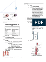 Assessment of the Peripheral Vascular System
