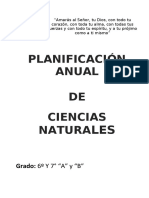 Plani Anual Ciencias Naturales sexto y septimo grado 2020.docx