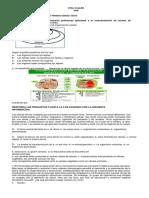 TALLER SOBRE CELULA GRADO SEXTO.pdf