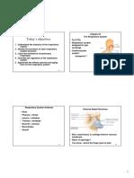 Cha 24 Tortora Respiratory System