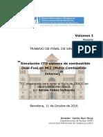 Memoria comb.pdf