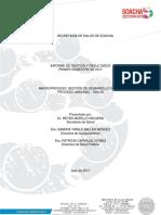 Informe de Gestin I Semestre 2017.pdf