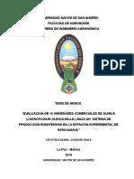 tesis crystin.doc