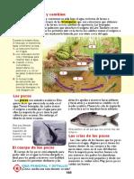 lecto5.pdf