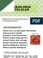 EXPOSICION FISIOLOGIA CELULAR MECANISMOS DE TRANSPORTE.pptx