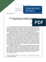 AGRICULTURA DE PRECISÃO - FUNDAMENTOS, APLICAÇÕES E PERSPECTIVAS PARA A CULTURA DO ARROZ