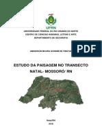ESTRUTURA DA PAISAGEM NO TRANSECTO NATAL - MOSSORO /RN