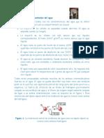 CARACTERISTICAS ANOMALAS DEL AGUA LECTURA.pdf
