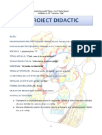 proiect_didactic_dosed_societate_grad_i.docx