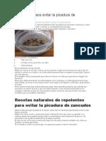 REPELENTES CASEROS CONTRA MOSQUITOS