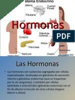 Hormonas.pps