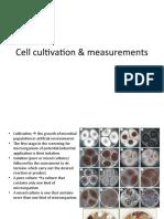 slide cell number-1.ppt