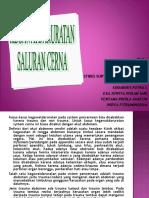 KGD-SALURAN CERNA