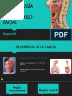 embriologaespecialbucomaxilofacial5-170820233534 (1)