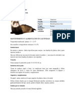 Manejo de hurones (1).docx