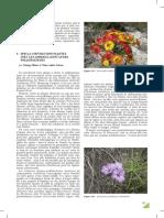 coe_volution_australie.pdf