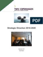 PWN Copenhagen Strategy 2018.pdf