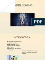 TRABAJO DE ANATOMÍA (1).pptx
