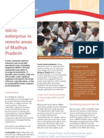 MPRLP 4 Page Brochure Describing the Project