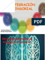 Integración Sensorial Intro.pdf