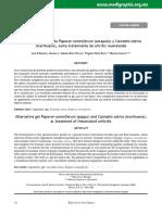 ene111d.pdf