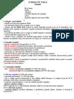 SCHEMA PE TABLA-Sangele.doc