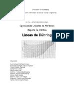 Reporte_Líneas de During.docx