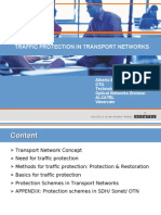 Transport Network Protection