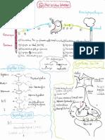 Résumé SNA 1 et 2.pdf