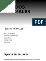 TEJIDOS_ANIMALES.pptx_0.odp