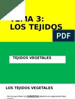 tejidos_vegetales.pptx_0.odp