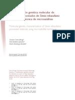 Dialnet-CaracterizacionGeneticaMolecularDeMaterialesProces-4896375