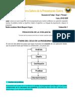 Etapas_del_Ciclo_de_la_ProgramacionMMMM